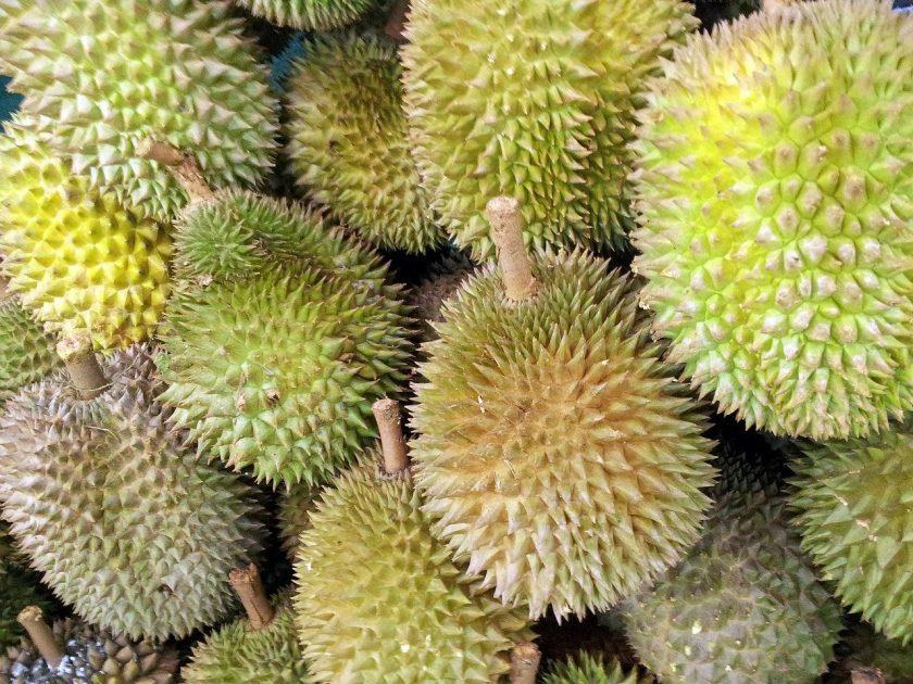 Wisata Kebun Durian Hanya 15 Ribu, Bisa Makan Durian Sepuasnya! Sumber: Pixabay