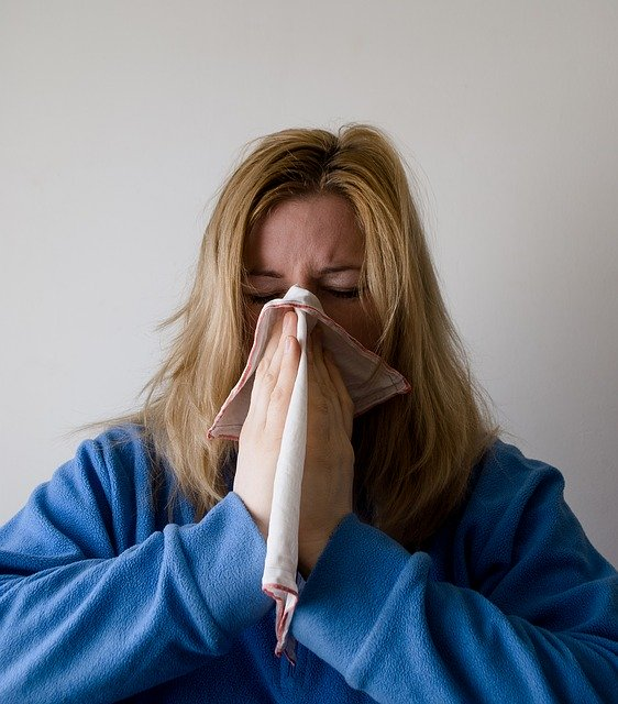 Traveler Rentan Terkena Influenza. Sumber Foto: pixabay.com